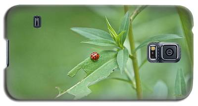 Ladybug On The Move Galaxy S5 Case