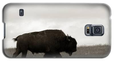 Lone Bison Galaxy S5 Case