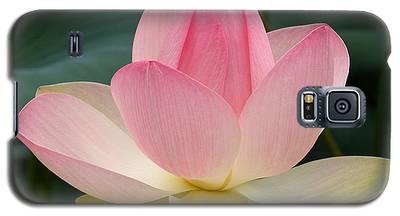 Lotus In Bloom Galaxy S5 Case