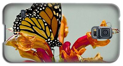Magnificent Monarch Galaxy S5 Case