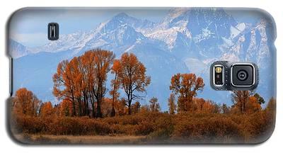 Majestic Backdrop Galaxy S5 Case