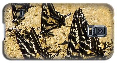 Merced Swallowtails Galaxy S5 Case