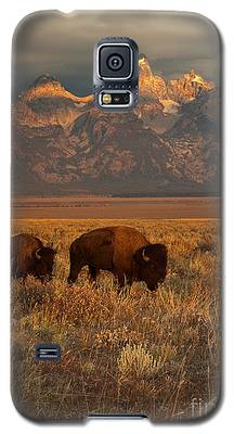 Bison Galaxy S5 Cases