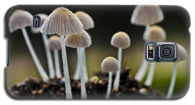 Mound Of Mushrooms Galaxy S5 Case