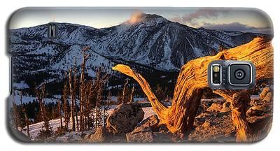 Mountain Snake Galaxy S5 Case