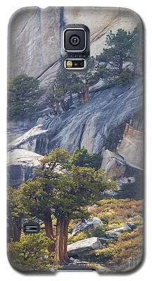 Natural Drama Galaxy S5 Case