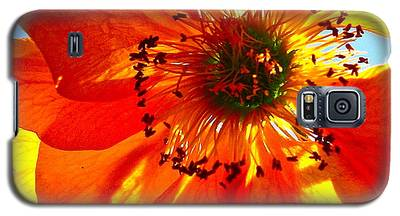Orange Burst Galaxy S5 Case