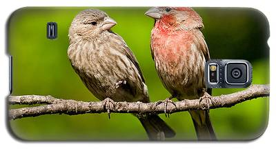 Pair Of House Finches In A Tree Galaxy S5 Case