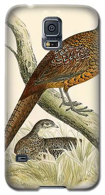 Pheasant Galaxy S5 Cases
