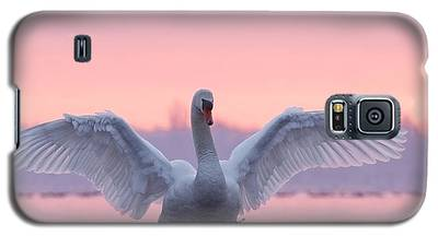 Swan Galaxy S5 Cases