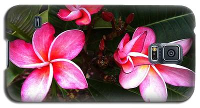Plumeria Blooms Galaxy S5 Case