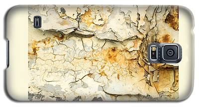 Rust And Peeling Paint Galaxy S5 Case