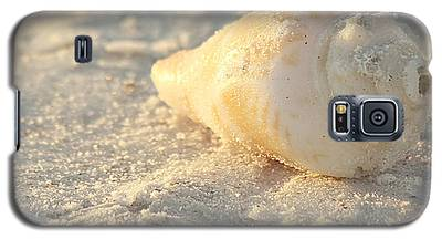 Sea Shells Galaxy S5 Case