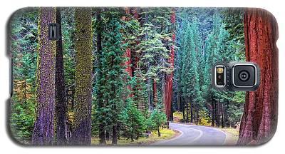 Sequoia Hwy Galaxy S5 Case
