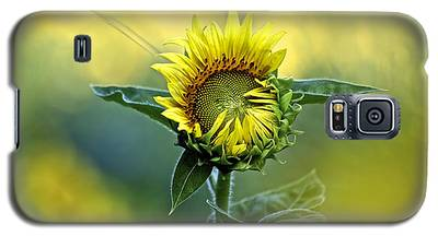 Shy Sunflower Galaxy S5 Case