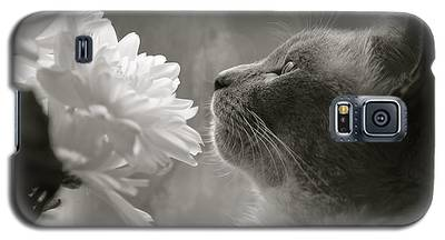Siamese Cat With Flowers Galaxy S5 Case