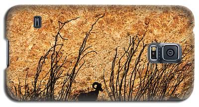 Silhouette Bighorn Sheep Galaxy S5 Case
