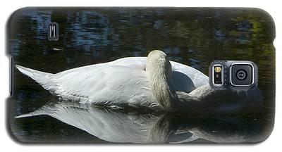 Sleeping Swan Galaxy S5 Case