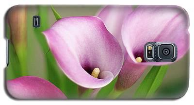 Soft Pink Calla Lilies Galaxy S5 Case