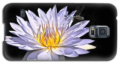 Summer Magic -- Dragonfly On Waterlily On Black Galaxy S5 Case