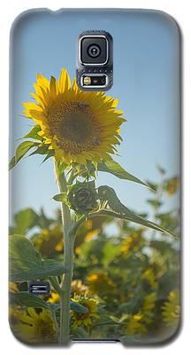 Sunlight And Sunflower2 Galaxy S5 Case