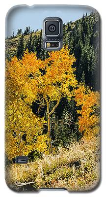 The Arch Galaxy S5 Case