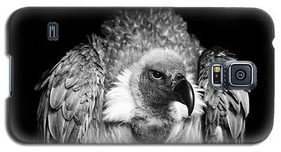 Vulture Galaxy S5 Cases