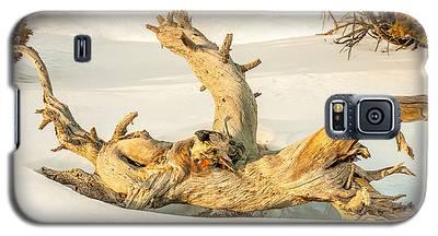 Twisted Dead Tree Galaxy S5 Case