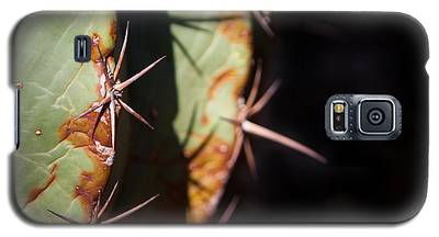 Two Shades Of Cactus Galaxy S5 Case
