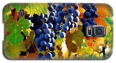 Vineyard 2 Galaxy S5 Case