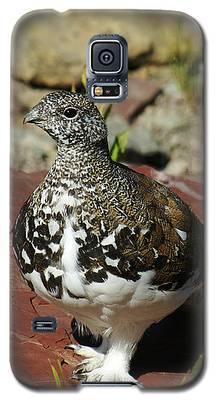 White-tailed Ptarmigan Galaxy S5 Case