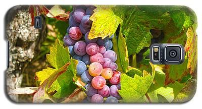 Wine Grapes II Galaxy S5 Case