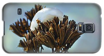 Winter Agave Bloom Galaxy S5 Case