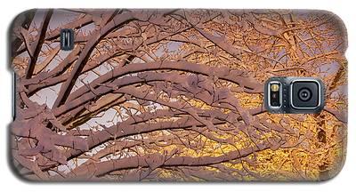 Winter Morning Galaxy S5 Case