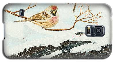 Artic Redpoll Galaxy S5 Case