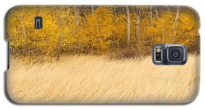 Aspen And Grass Galaxy S5 Case