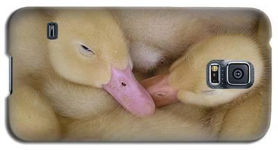 Baby Ducklings Galaxy S5 Case
