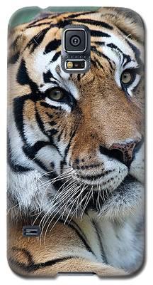Bengal Galaxy S5 Case