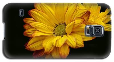 Bright And Brassy Galaxy S5 Case