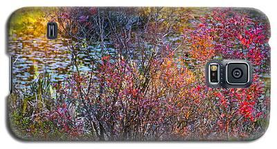 Bright Autumn Light Galaxy S5 Case