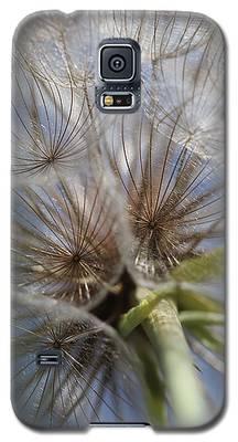 Bug's Eye View Galaxy S5 Case