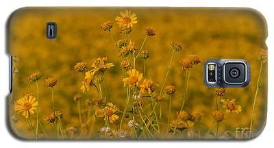 Daisy's Galaxy S5 Case
