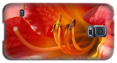Daylilly Close Up Galaxy S5 Case