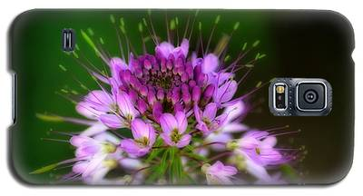 Desert Bloosom Galaxy S5 Case