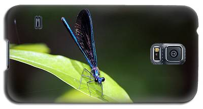 Dragonfly Fly Galaxy S5 Case