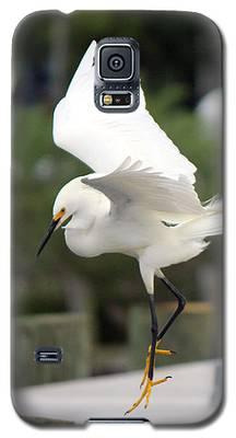 Egret Ballet Galaxy S5 Case