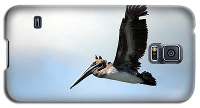 Fly Free Galaxy S5 Case