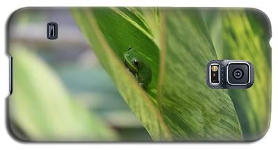 Newbie Galaxy S5 Case