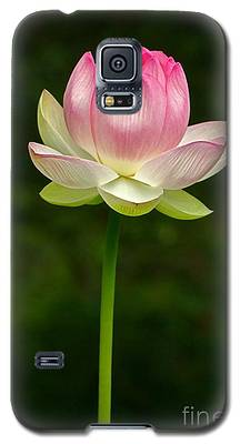 No Less Magical Galaxy S5 Case