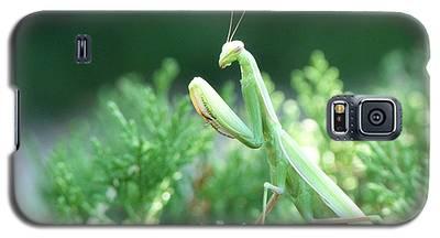 Praying Beauty Galaxy S5 Case